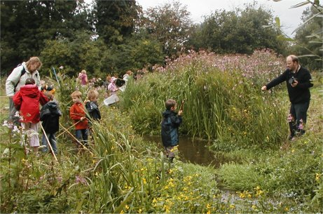 Children examine the results of pond dipping